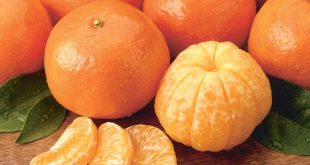 tangerines-health-in-a-small-package2